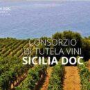 Consorzio di tutela vini Doc Sicilia: previsioni di una buona annata – Vendemmia 2020.