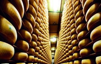Parmigiano Reggiano Dop pronto al nuovo appuntamento con caseifici aperti
