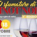 Voghera, 50 sfumature di Pinot Noir… 50 assaggi dei 200 viticoltori di Torrevilla dell'Oltrepo Pavese