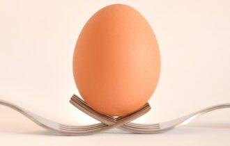 Gruppo Eurovo celebra il World Egg Day invitando gli italiani a scoprire le virtù della colazione a base di uova