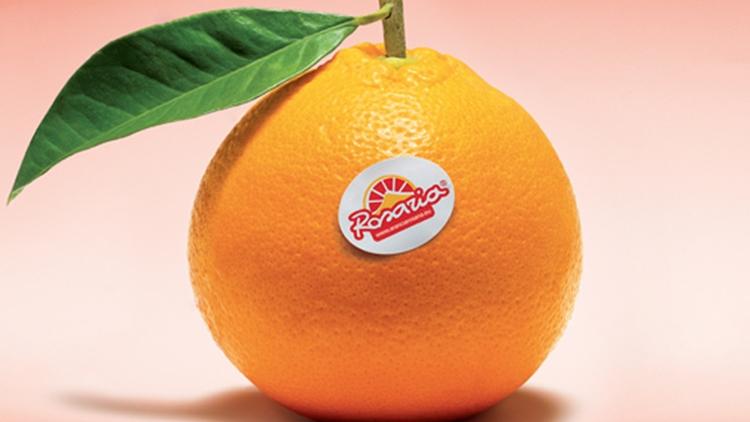 Partita la campagna commerciale di Rosaria con una buona disponibilità di Arancia Bionda