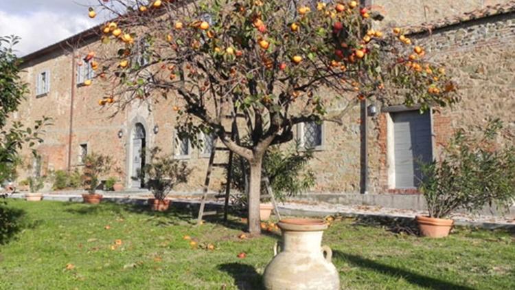 Ad Antico Casale di Montegualandro a Tuoro sul Trasimeno in Umbria, terra d'arte e tradizioni dall'anima slow