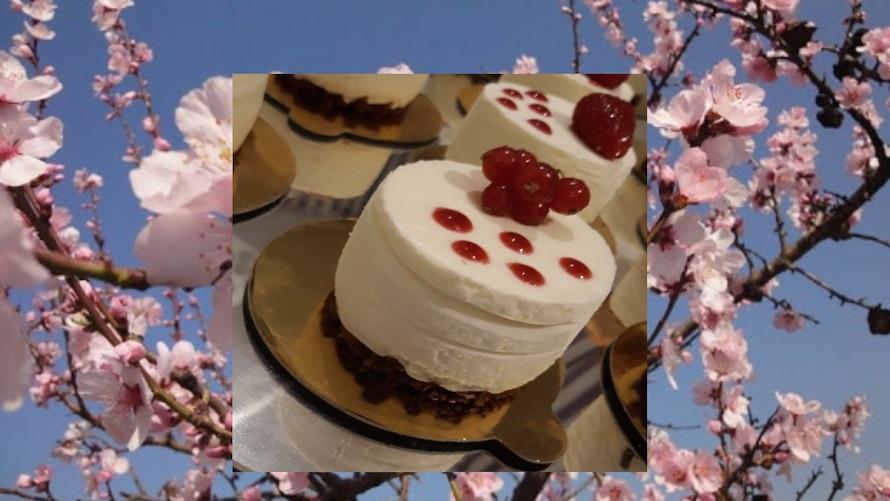 RAW CHEESE CAKE: Ricetta pasticceria crudista di Marco di Lorenzi