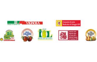 L'Europa firma i prodotti dei suoi territori: Radicchio di Treviso IGP, il fiore d'inverno