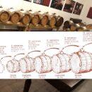 Aceto balsamico di Modena IGP: usi e ricette creative … aiuta anche la dieta dimagrante