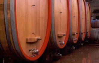 Vino Italia – Giacenze in cantina al 31.12.2020 by Giampietro Comolli