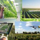 Alessio Mammi, assessore agricoltura Emilia Romagna: Le Regioni punto cardine e riferimento della Pac dell'Europa