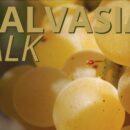 MALVASIA TALK 22 marzo ore 17:00 live streaming