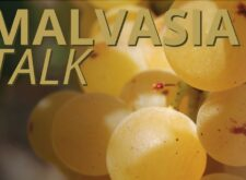 MALVASIA TALK 22 marzo ore 17:00 live streaming