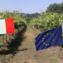 PAC E RESILIENZA CLIMATICA AMBIENTALE GEOAMPELOGRAFICA – Nuovi impianti viticoli e cambio climatico,
