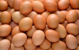 L'Italia dalle uova d'oro, Unaitalia: saranno 400 milioni le uova consumate a Pasqua