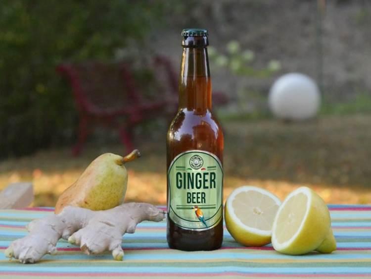 Ginger Beer, una bevanda nuova e unica