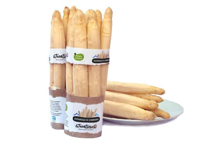 Al via la stagione dell'asparago bianco di Zambana La Trentina