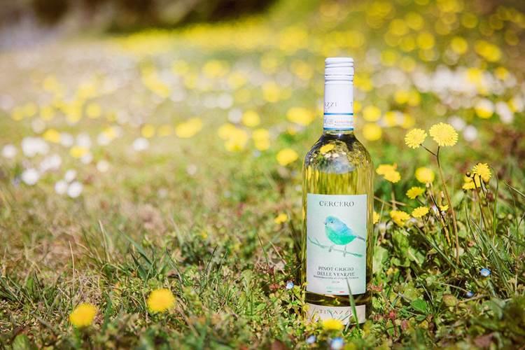 Una linea di vini biologici dedicata all'export: la svolta green di Tinazzi