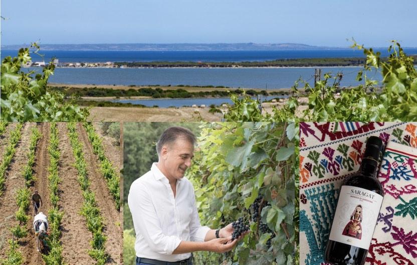 Valentino Sciotti, Fantini group: realizzo un mio grande sogno per i grandi vini di Sardegna