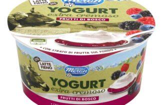 Yogurt intero extra cremoso Latte Fieno di Latteria Merano – gusto Frutti di Bosco