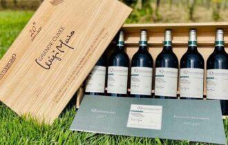 I vini della ripartenza di Pellegrini S.p.A.