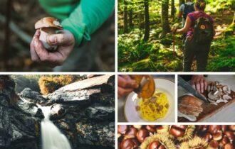 Alta Val Taro, un autunno nel segno del sottobosco tra porcini, castagne e tartufi