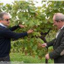Perlage Winery, Altromercato e Germinal stanno per inaugurare la filiera 4.0