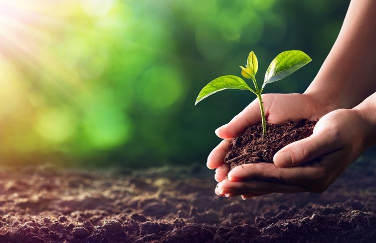 G20 Agricoltura, Castagnedi (Tenuta Sant'Antonio): Sostenibilità e cambiamento climatico sfide esistenziali per il futuro, investire e fare squadra per superarle