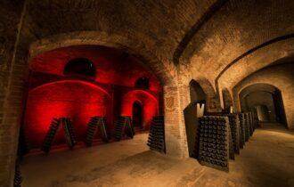 Cattedrali storiche Bosca e visite in cantina (Canelli)